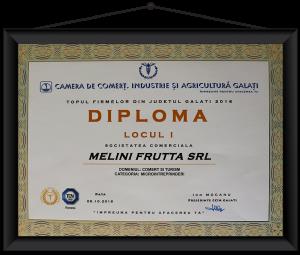 diploma_1