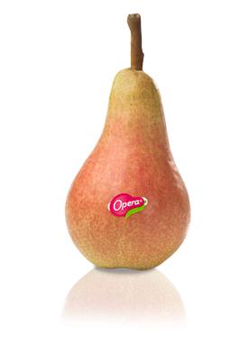 pere_Carmen-Opera-Melini Frutta