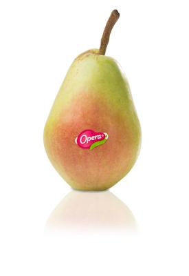 pere-Santamaria-Opera-Melini Frutta